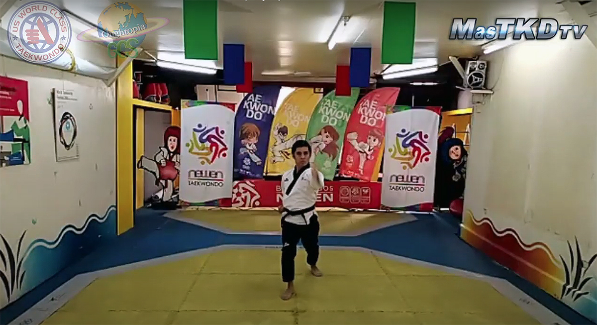 2020 World Virtual Taekwondo Festival