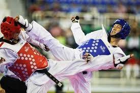 2013-11-20_Taekwondo_Tournament