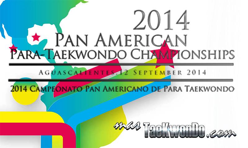 Aguascalientes 2014 banner