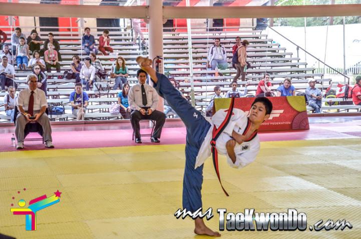 aguascalientes poomsae championships