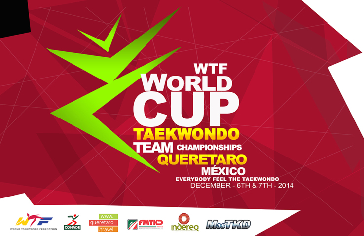 team world cup