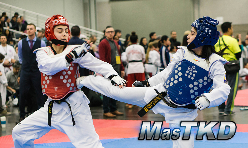 Successful 2017 U.S. World Open Taekwondo Championship