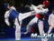 Historic Roma 2019 World Taekwondo GP draws to a close with a clean sweep for Russia